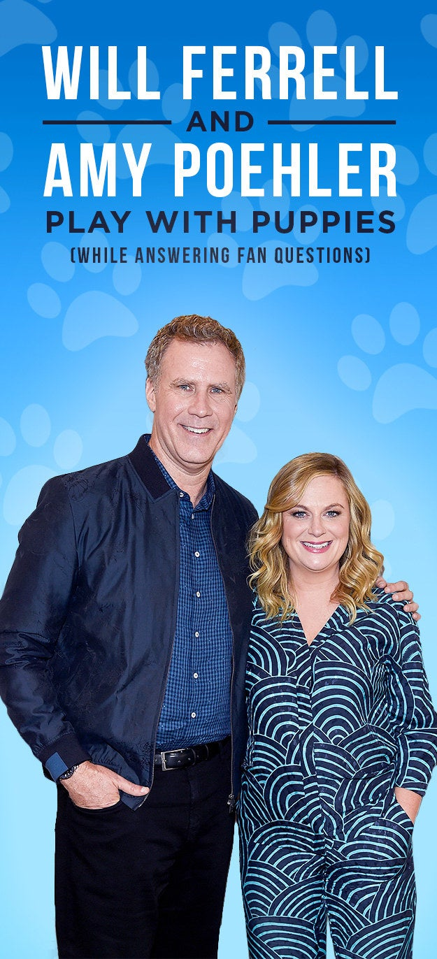 From their respective seasons on Saturday Night Live to leading box office hits on the silver screen, Will Ferrell and Amy Poehler have become Hollywood's King and Queen of comedy. The hilarious duo recently combined forces for their upcoming movie The House, so we decided to ask them hilarious fan-submitted questions by members of the BuzzFeed Community with the help of some furry (and distracting) friends.
