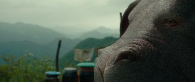 Okja es un animalito adorable.