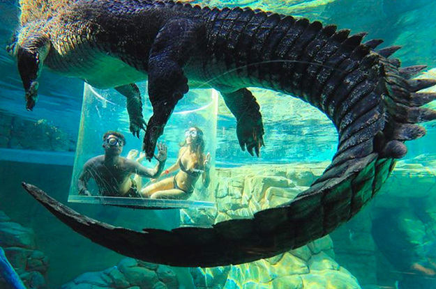 24 Extreme But Scary Activities You Can Actually Try In Australia