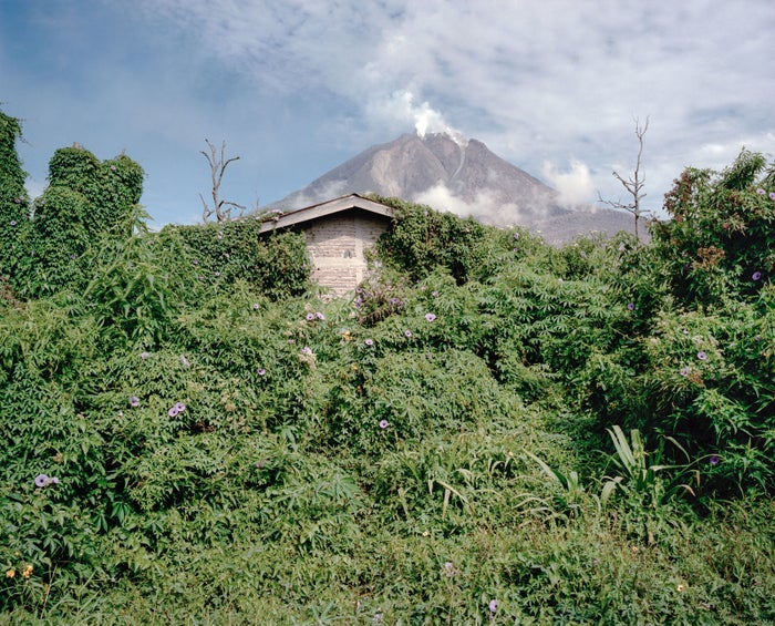 Vegetation covers an abandoned house with a view of Mount Sinabung in the background.