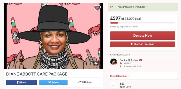 "A screenshot of a GoFundMe campaign set up to raise money for a Diane Abbott ""care package""."