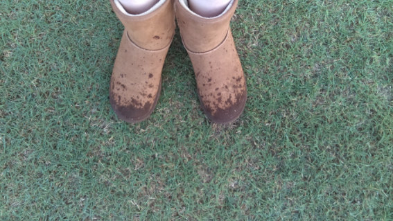 Few things ruined your day more than getting your Uggs wet.