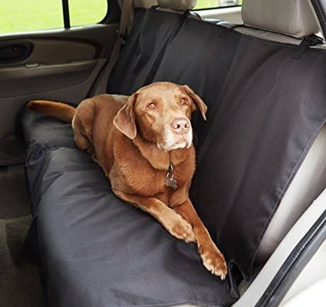 """Promising Review: """"This was easy to install, and made of sturdy material. Our dog regularly rides in the back seat of the car while we take him to run errands, or to the park each week. Once this was on, he jumped in the backseat, and was nice and comfortable. Now we don't have to worry about getting the back seat dirty with drool/dirt/mud he tracks in."""" —C. Hernandez Jr.Get it from Amazon for $17.99."""