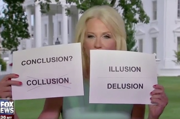 Kellyanne Conway Used Signs To Explain Collusion And People Died Laughing