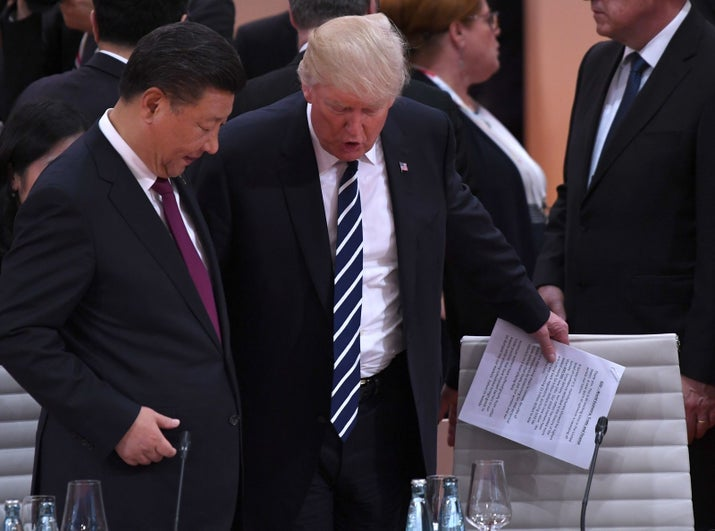 Trump and Xi during the G20 summit in Hamburg.