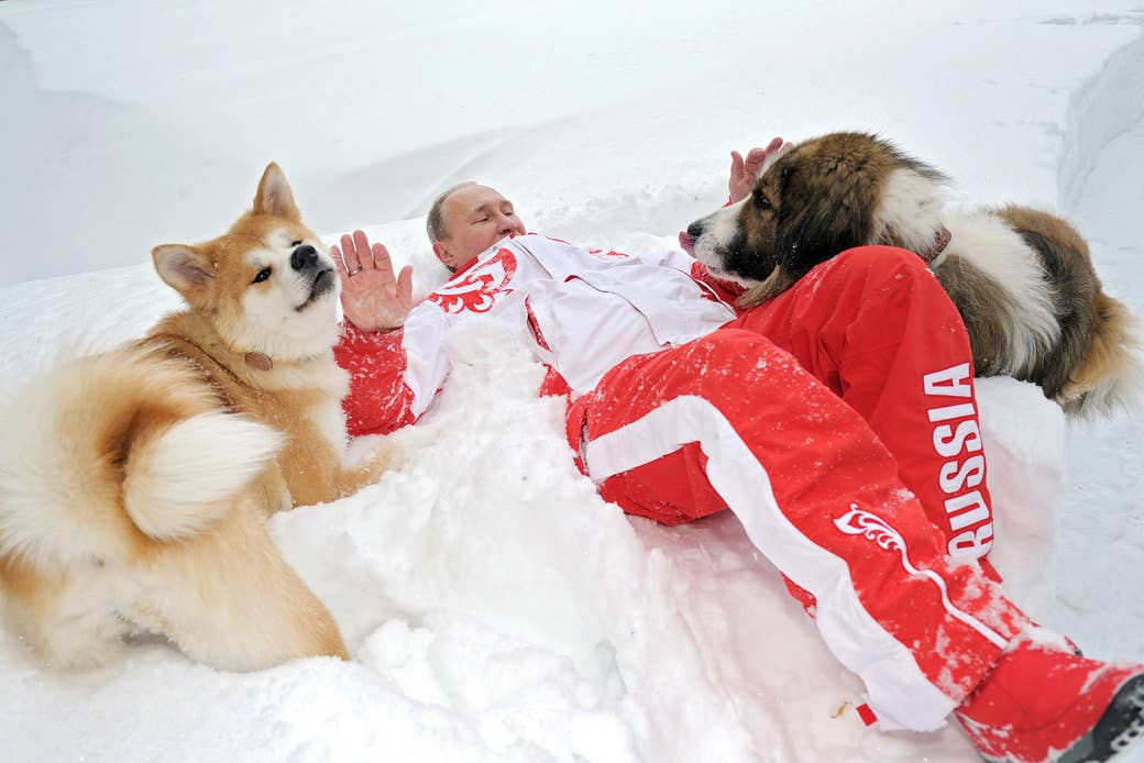 Putin plays with his dogs Yume (left) and Buffy (right) at his Novo-Ogaryovo residence on April 10, 2013. Buffy is a Bulgarian shepherd dog presented to Putin by Bulgarian Prime Minister Boyko Borisov, while former Japanese prime minister Yoshihiko Noda offered Yume as a gift to Putin during a G20 summit in Mexico.