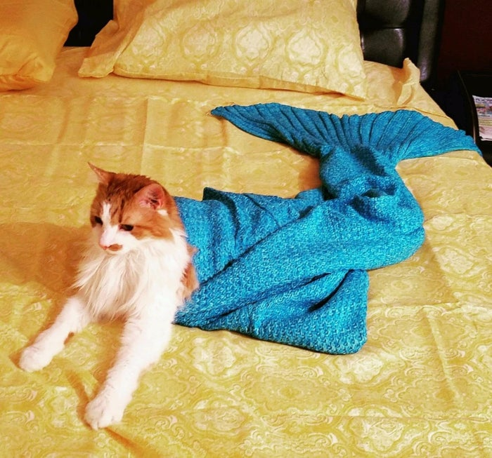 """Promising review: """"It is so beautiful. The package came in a little drawstring bag with a mermaid necklace my 5-year-old will certainly wear proudly. The blanket/tail is so warm and comfortable. I'm someone who wears a blanket if I'm on the couch or bed, no matter the temperature, and this is the perfect size to do that. The tail opens about halfway up to 'get' into. The fin area is thin and can't fit two adult feet, but small feet could. The tail opens up also so you don't have a closed tail all the way down. I am 5 foot 3 inches and this comes well past my lady lumps when pulled up."""" —MTBooneGet it from Amazon for $12 (available in 3 sizes and 45 colors)."""