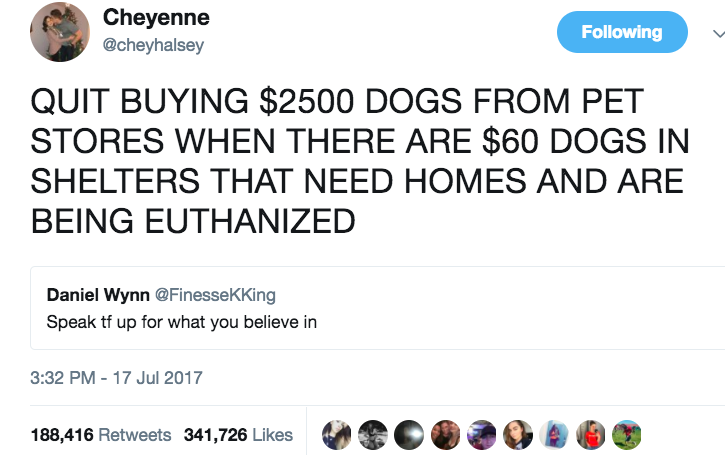 """""""It was actually really a surprise, the amount of people that knew absolutely nothing about adoption,"""" the teen told BuzzFeed News. """"They were so surprised you could get a dog for $60.""""She was also stunned and overwhelmed that her tweet went so viral. """"I just kind of freaked out at first,"""" she said."""