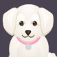 dogmom1
