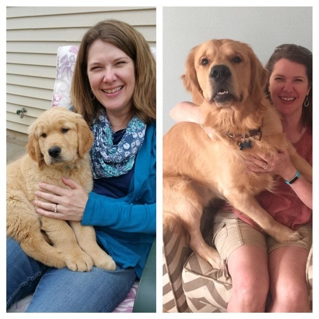 """Mother's Day 2015 versus 2016 with my mom and Finnick."" — Jenessa"