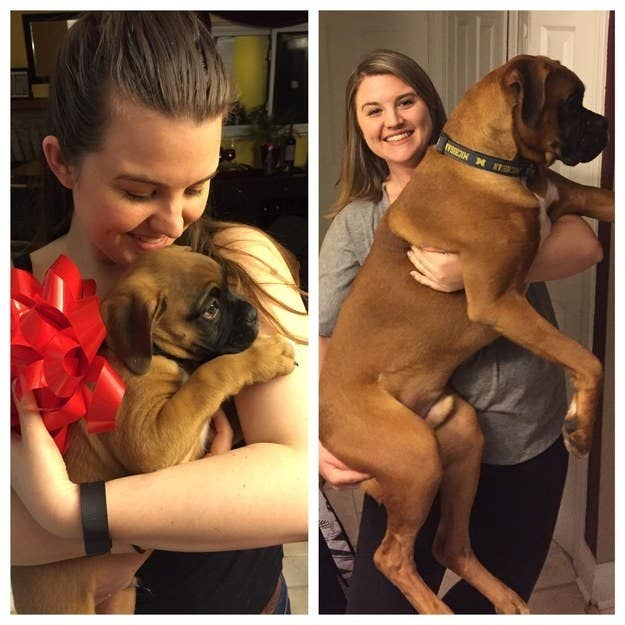 """The second photo is on his first birthday!"" — cburkard"
