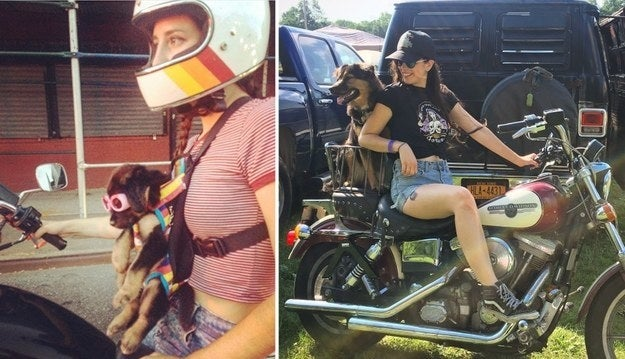 """""""This is my ride-or-die, Roadie. My boyfriend and I found her as a stray puppy while on a motorcycle trip last summer, and she's been riding with us ever since."""" — emilieschwenk"""