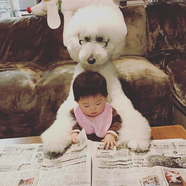 新聞を読む犬と赤ちゃん