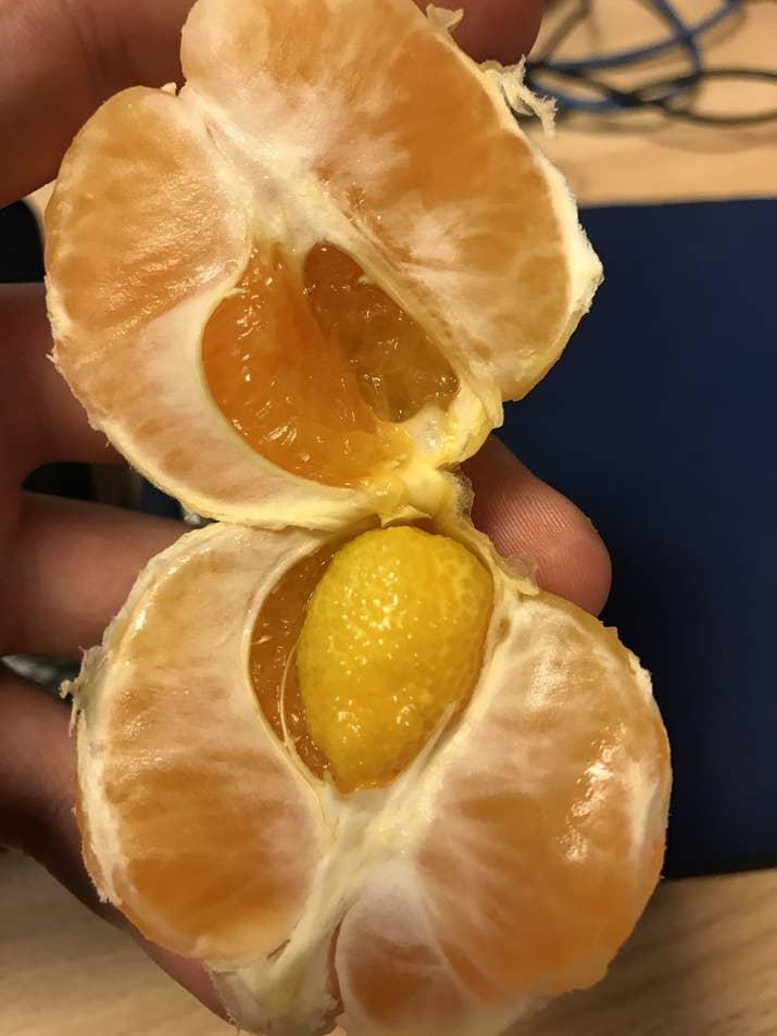 17個讓你邊看邊起雞皮疙瘩的「突破你極限水果」。