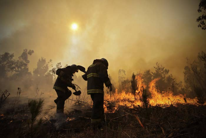 Firefighters dig trenches in an effort to stop the advancement of a forest fire in Hualañe, a community in Concepcion, Chile, Jan. 25.