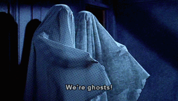 Living roommates are one thing, but discovering that your dorm is occupied by a ghost is an entirely different ballgame.
