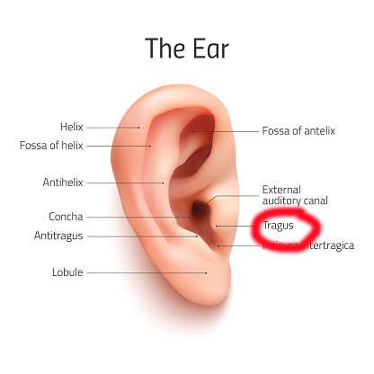 Here's Why Your Ears Are Always Itchy As Fuck