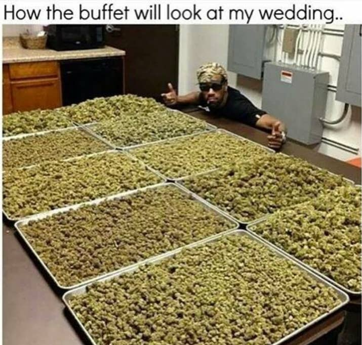 Weed is currently legal in Alaska, California, Colorado, Maine, Massachusetts, Nevada, Oregon, Washington, and Washington, DC.