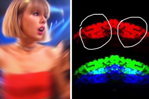 Taylor Swift Fans Are Actually Literal Detectives