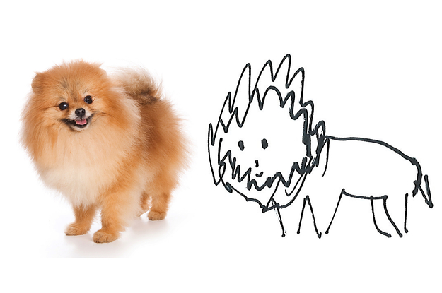 I Asked All Of My Coworkers To Draw Me A Pomeranian, And Here's How They Did
