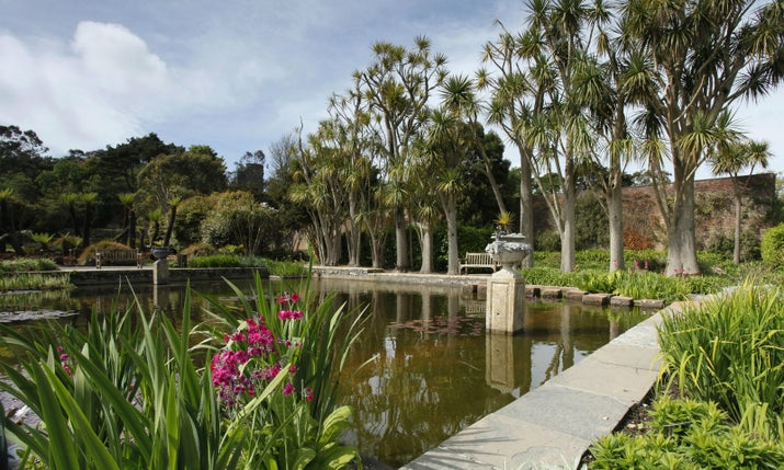 The Game of Thrones producers travelled all the way to Seville in Spain to bring the Water Gardens to life: House Martell's lavish, fancy palace in Dorne. They should have just visited the tropical-looking Logan Botanic Gardens in the south of Scotland instead.