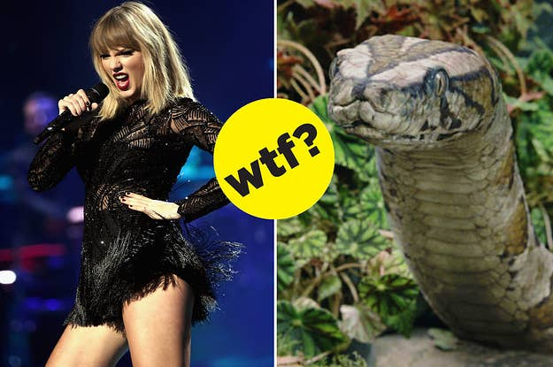 People Think Taylor Swift's