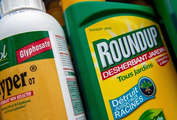 Das Mittel Roundup, das unter anderem wegen seiner Zutat Glyphosat in der Kritik ist.