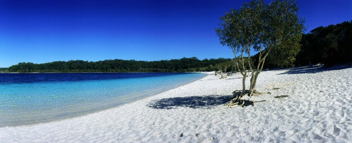 Fraser Island off the coast of Queensland is basically one big beach. So if you find yourself there and haven't become sick of sand, you can go for a hike into the Great Sandy National Park and enjoy...another beach! This one's a little different though: it's freshwater lapping against white sand.