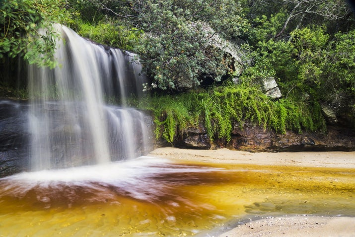 This secluded nook at the edge of the Sydney Harbour National Park features a small waterfall looking out onto the harbour. It's a popular spot for locals on weekends.