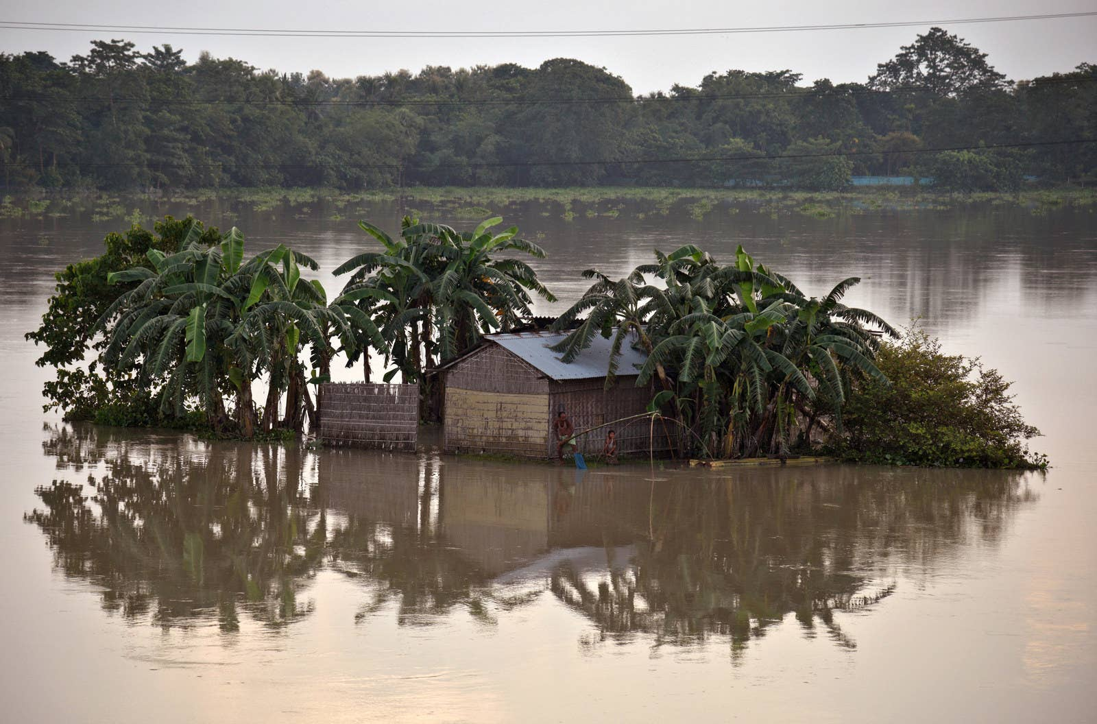 A man casts his fishing net in the flood waters next to his partially submerged hut in the northeastern Indian state of Assam.