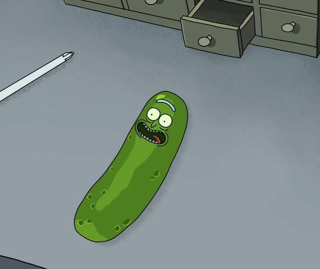 Inspired by PICKLE RICK!