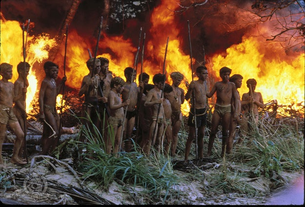 There's a new Lord of the Flies movie in the works, and it's got a major twist: all the boys stranded on the island will instead be girls.