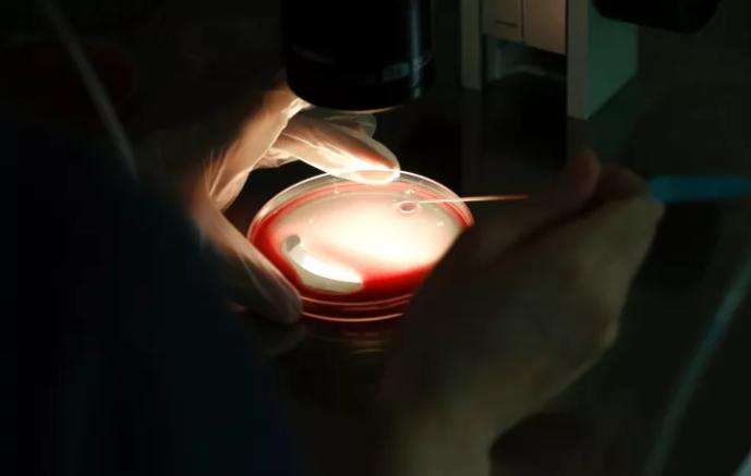 FDA Slams Fertility Doctor For Marketing '3-Parent-Baby' Technology