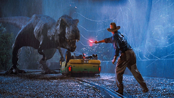 "The injury took place during the scene in which Grant uses the flare to distract the T. rex. According to Neill: ""It [the flare] dropped some burning phosphorous on me, got under my watch, and took a chunk of my arm out."""