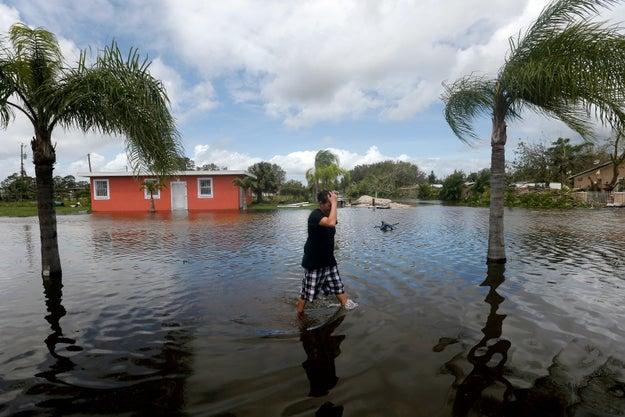 Immokalee, Florida