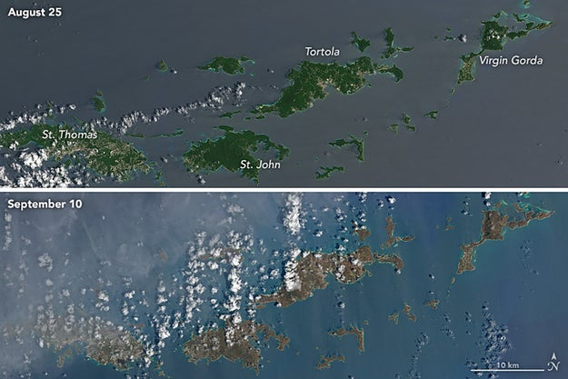 Images captured by NASA showed the once-vibrant green Virgin Islands had turned brown in the wake of Irma.