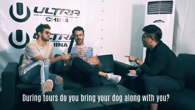In the now-deleted video, the interviewer asks Chainsmokers member Alex Pall if he brings his dog on tours with him.
