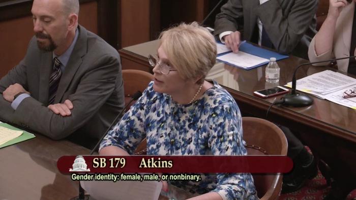 Intersex activist Sara Kelly Keenan spoke on behalf of the bill to the Senate Judiciary Committee on April 25, 2017.