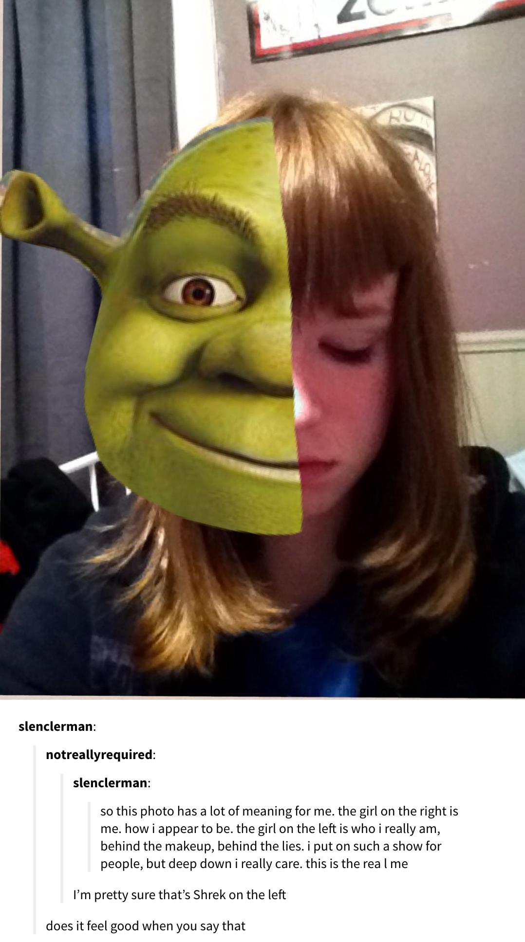 24 Shrek Posts That You Should Let No Innocent Child See