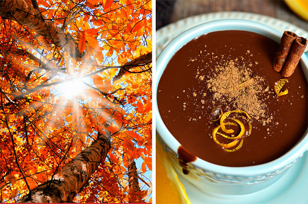 If You Do 22/33 Of These Things, You're Officially Obsessed With Autumn