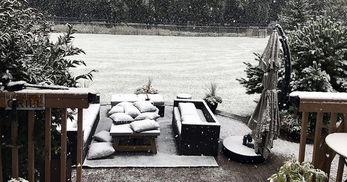 It's Still Summer And It Just Snowed In Edmonton