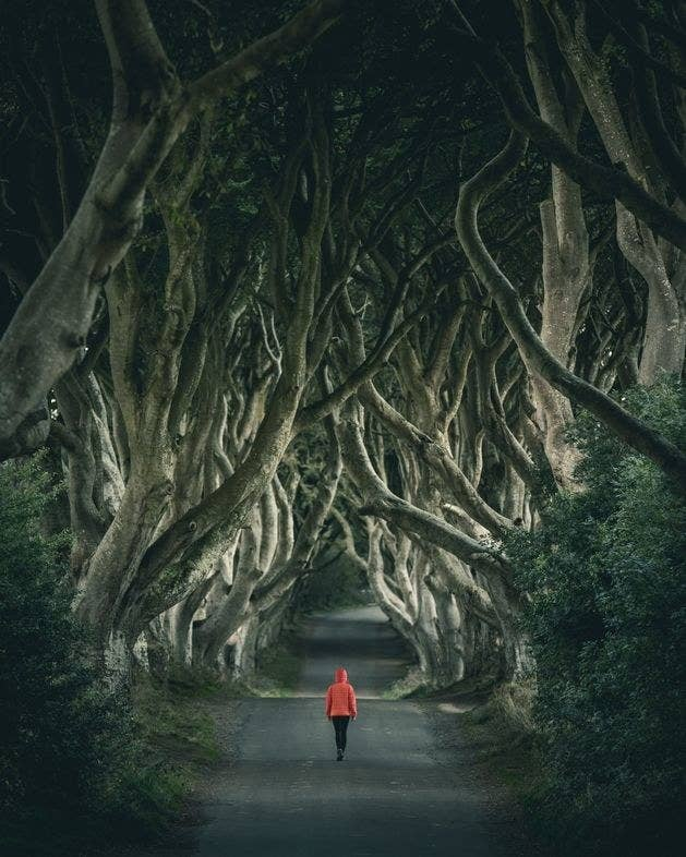 This pass might be familiar to Game of Thrones fans, best known as the Kingsroad. Lined by beech trees, this is the perfect location if you're looking for a moody vibe in your next photo.