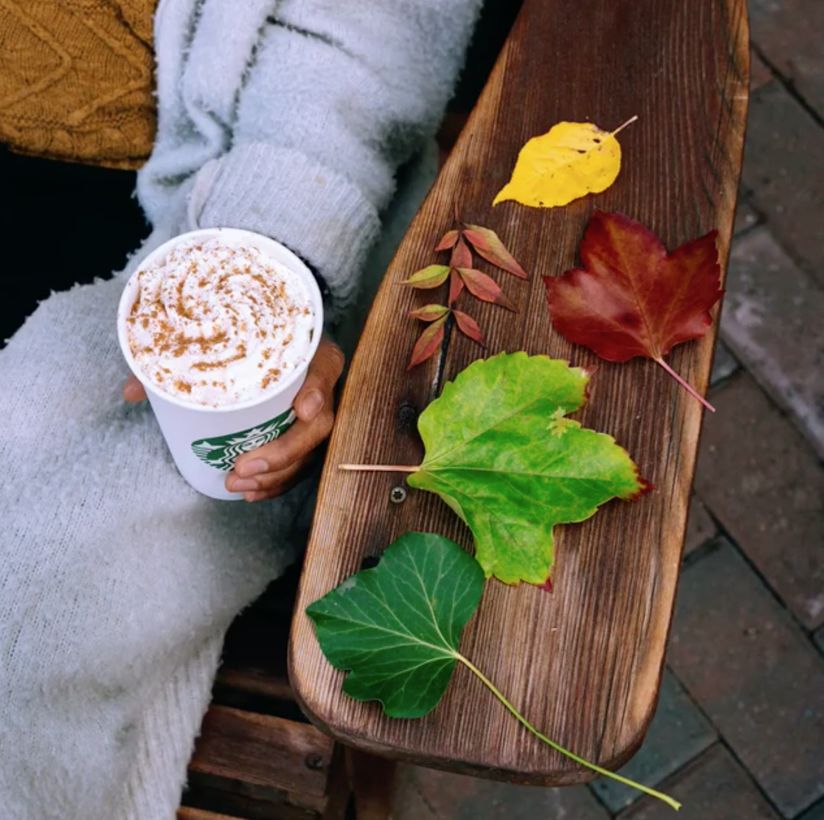 model holding starbucks hot drink with whipped cream in their hand