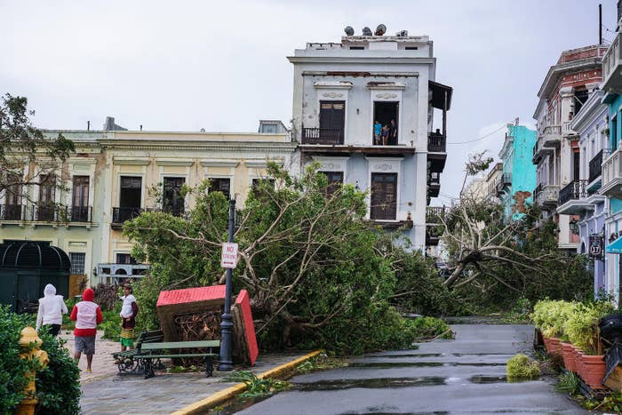 Plaza Colón in Old San Juan is covered in fallen trees after Hurricane Maria made landfall.