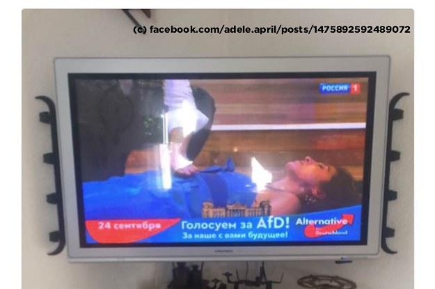 Die AfD schaltet nun offenbar auch Wahlwerbung im russischen Staatsfernsehen