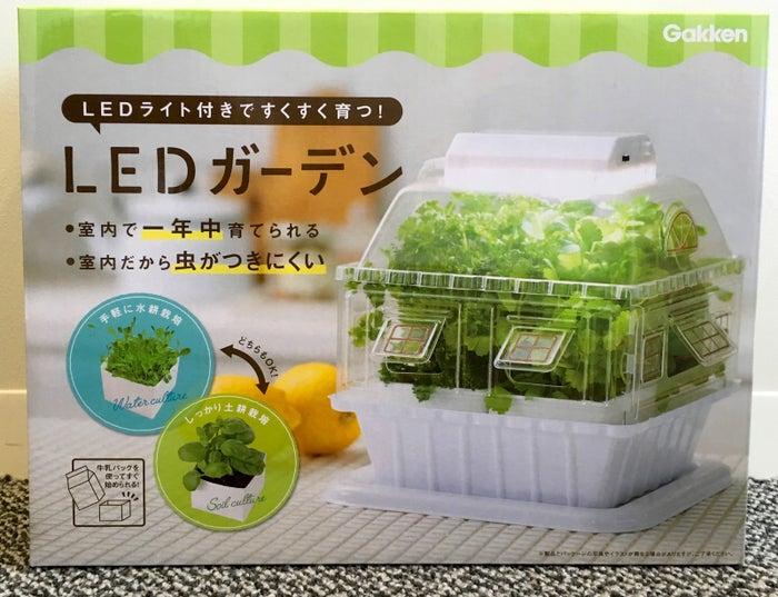 卓上でいろんな野菜が育てられる「LEDガーデン」です。