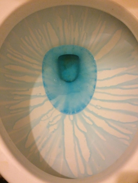 17 Things That Ll Make Your Bathroom The Cleanest It S