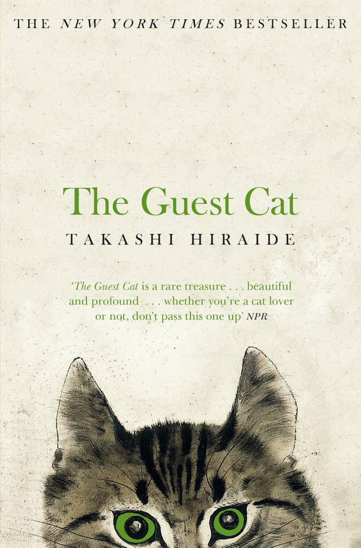 Books That Will Make You Cry - 21 times tumblr made us love cats even