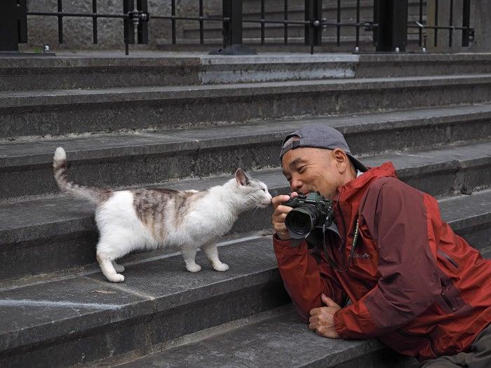「ネコは人間とともに世界に広まった。だからその土地のネコはその土地の人間に似る!」という岩合さん。本作のベースとなるNHK BSプレミアムの人気番組「岩合光昭の世界ネコ歩き」では、世界中を旅しながら現地のネコ達の暮らしを撮影してきました。