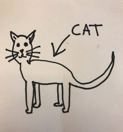 (I drew this myself from memory after years of seeing cats. Because I know about cats, ok?)